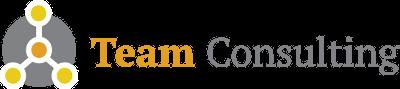 Team Consulting logo